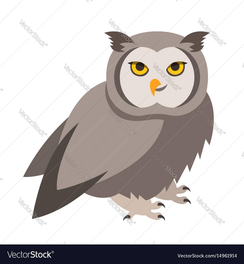 Cute smiling owl cartoon vector image