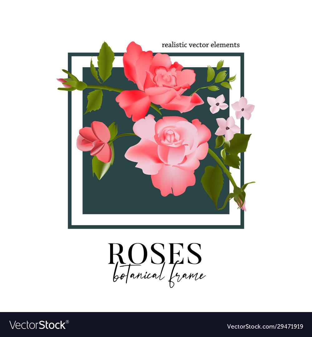Set watercolor floral elements - wildflowers