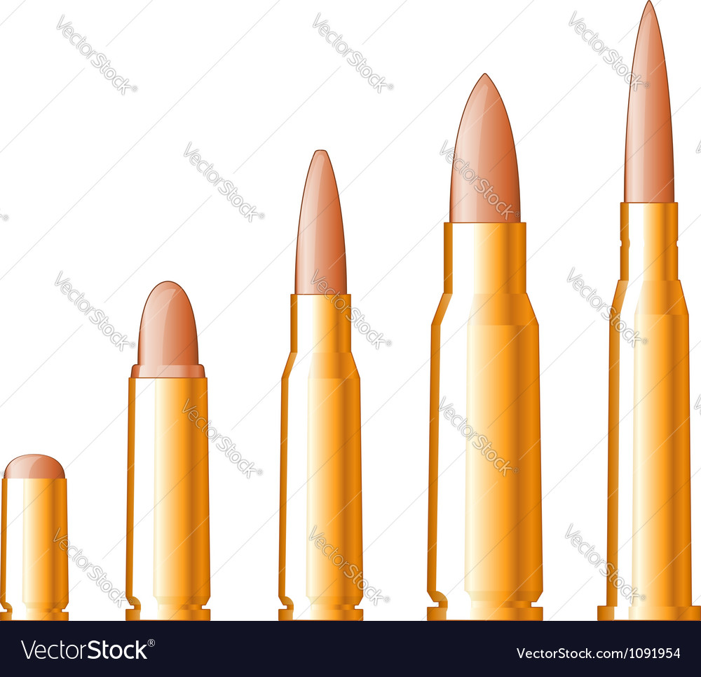 Set of gun bullets vector image