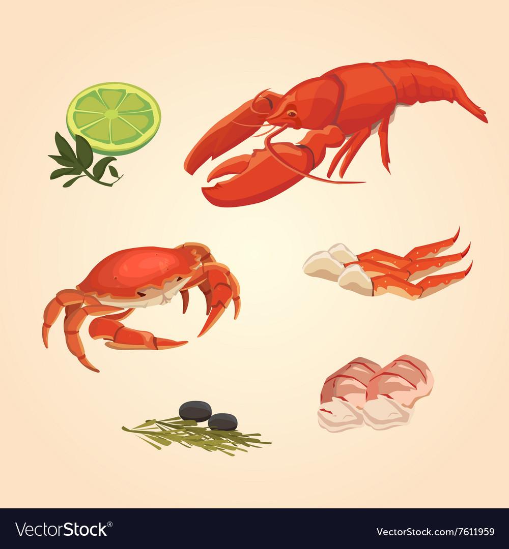 Set sea food crab and crawfish vector image