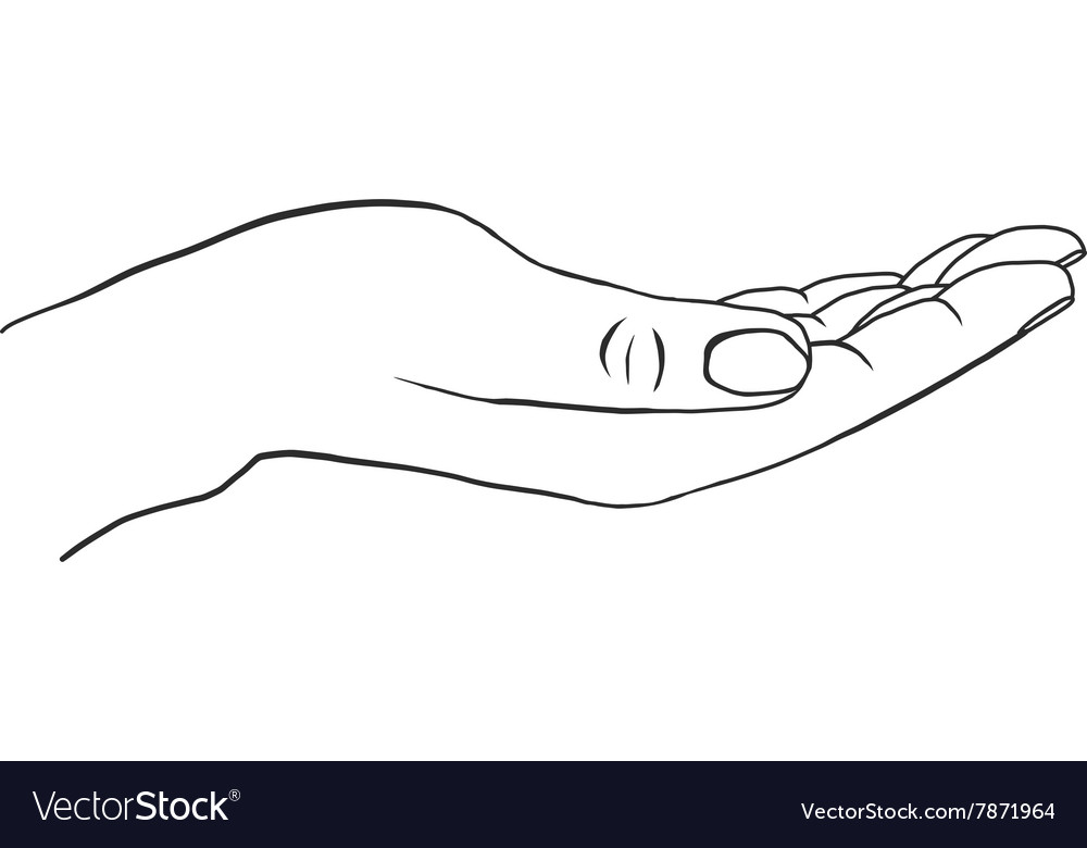 Outstretched hand with empty palm vector image
