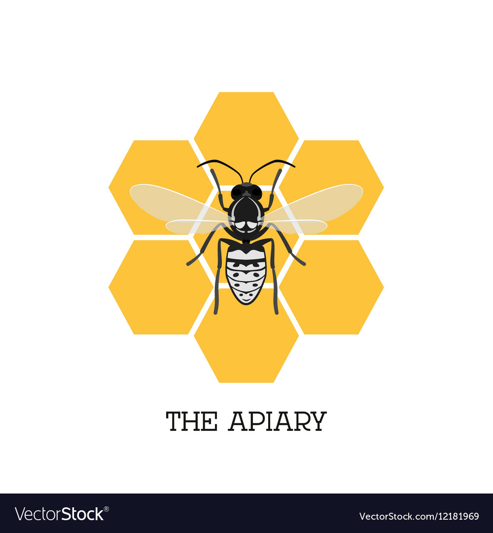Apiary concept with bee and honeycomb