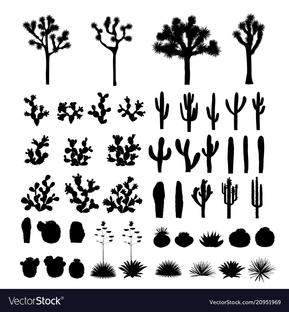 Big collection of black silhouettes of cacti