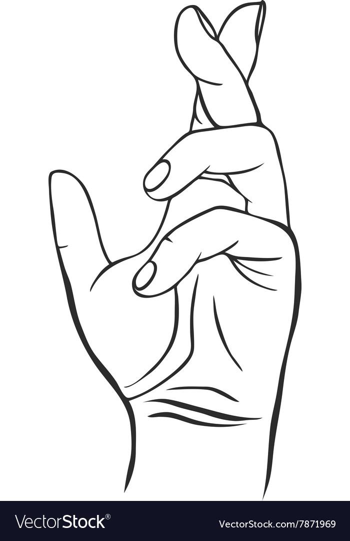 Line drawing human hand vector image