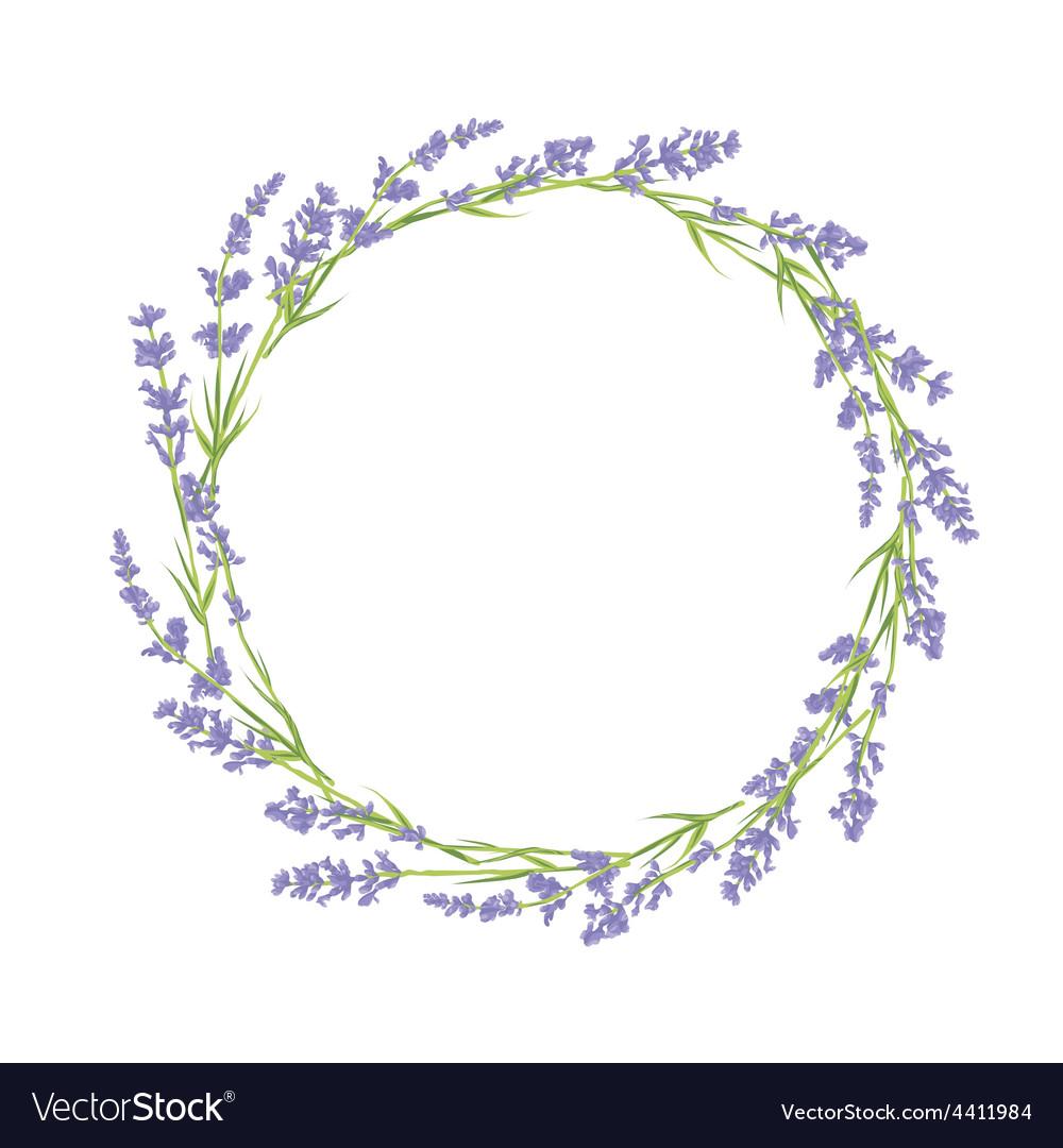 Circle lavender flowers