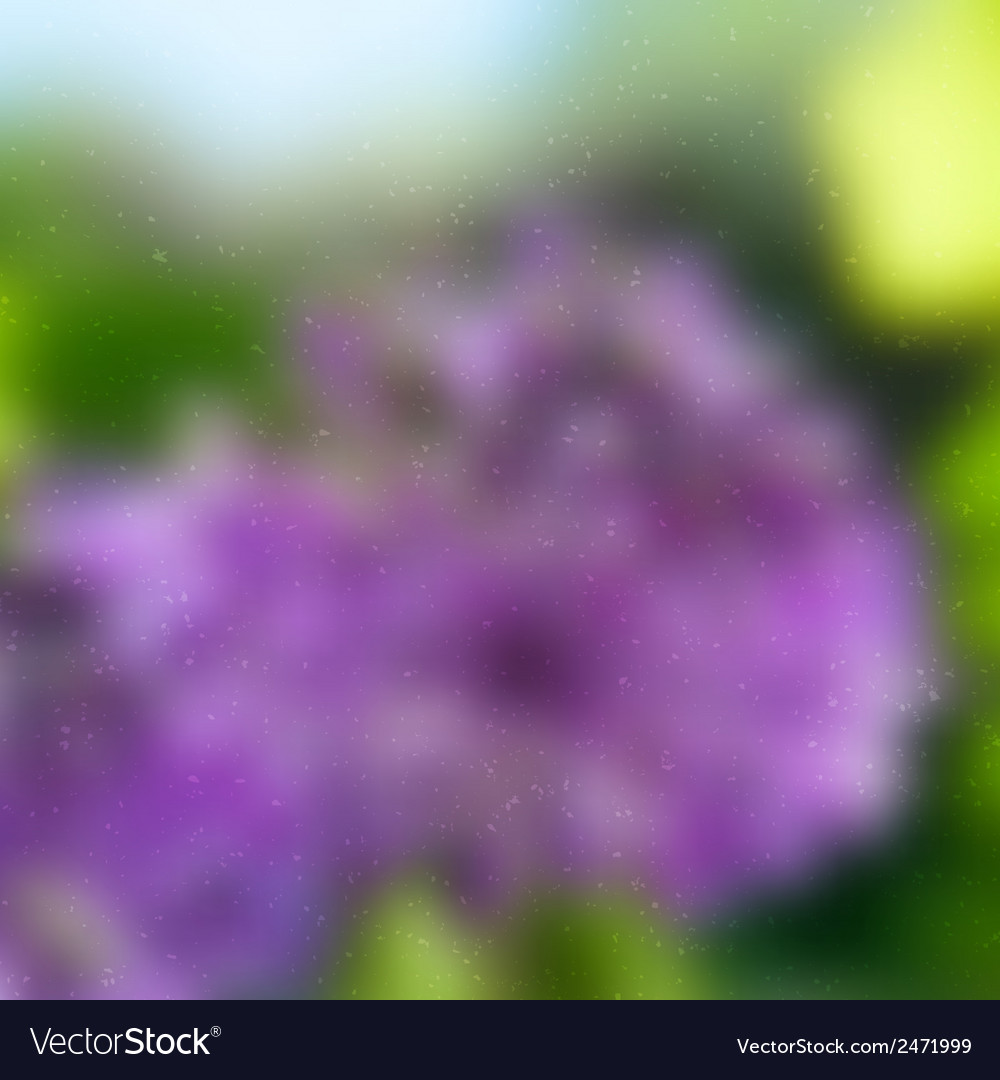 Abstract Garden Grunge vector image