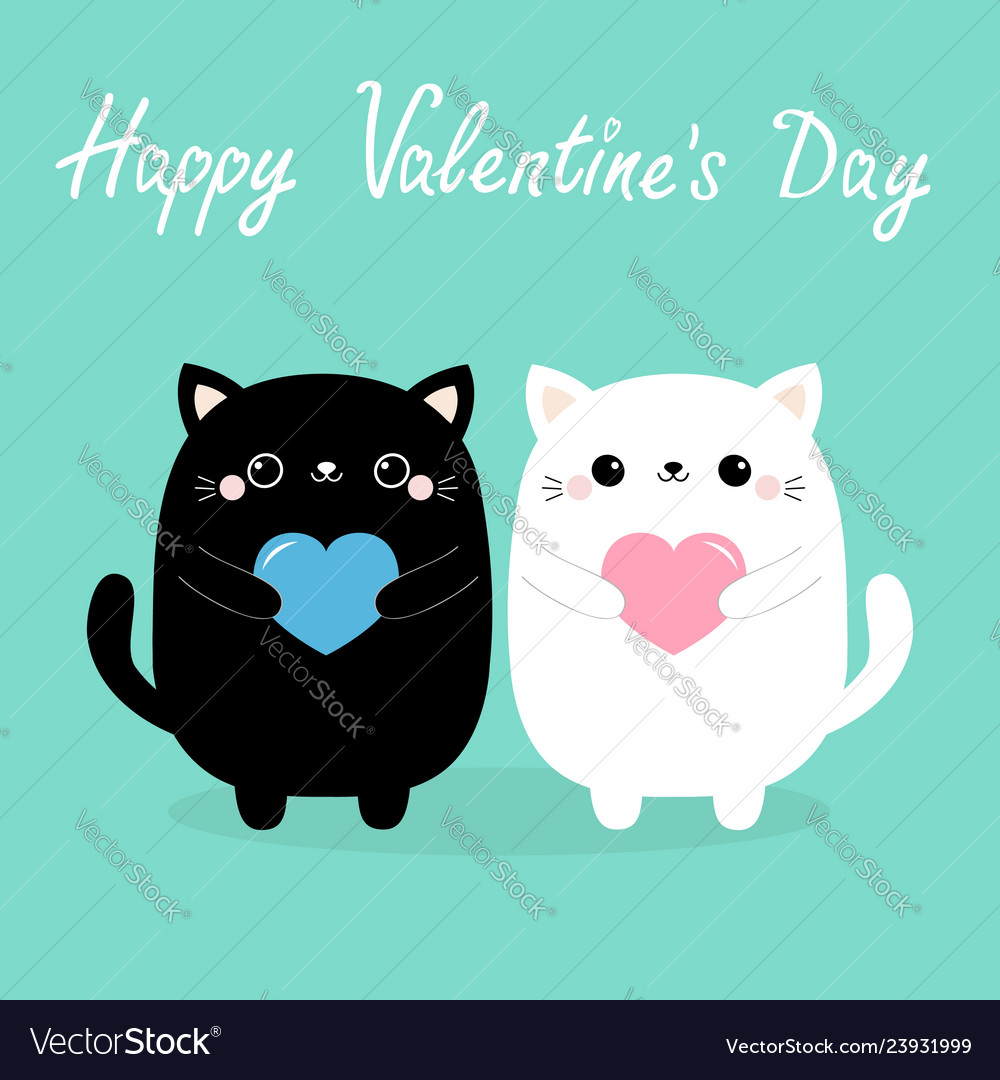 Happy valentines day white and black baby cat
