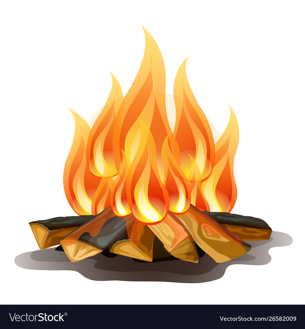 Camp fire isolated on white background cartoon