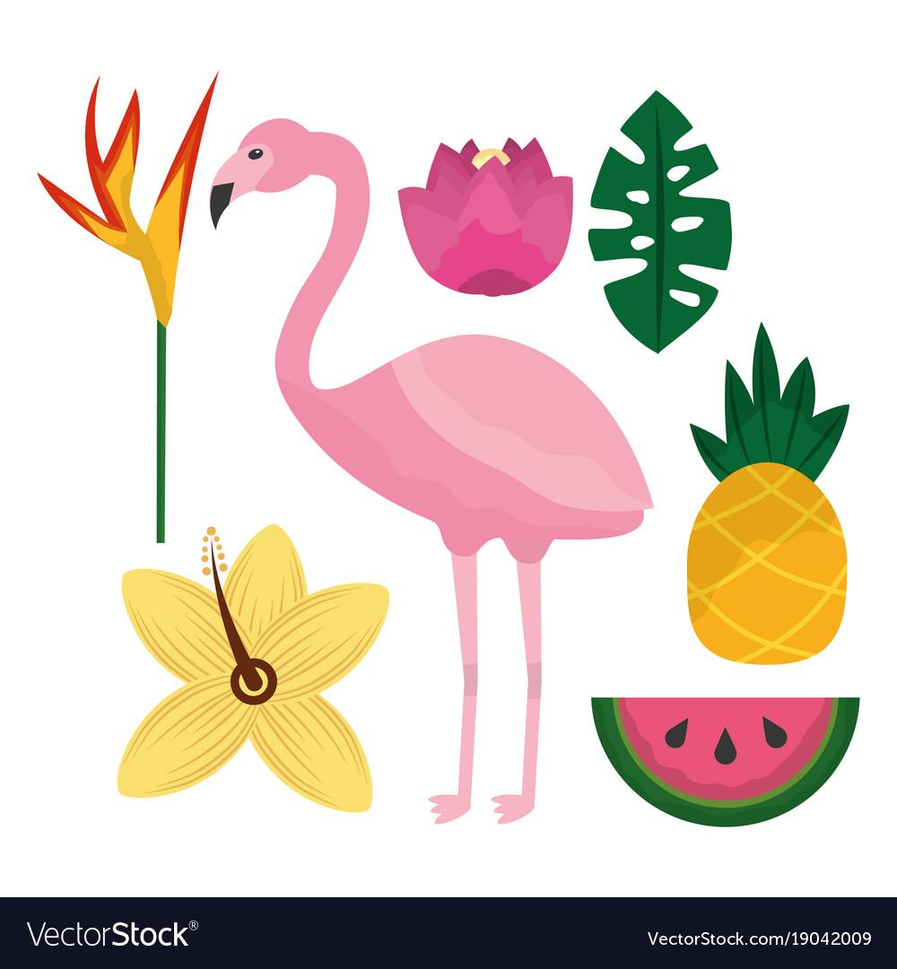 Tropical flamengo hibiscus pineapple watermelon