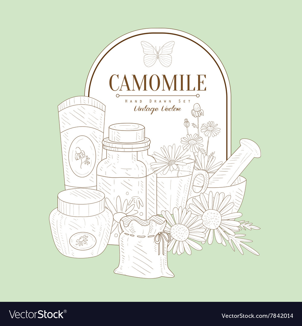 Vintage Sketch With Camomile Cosmetics