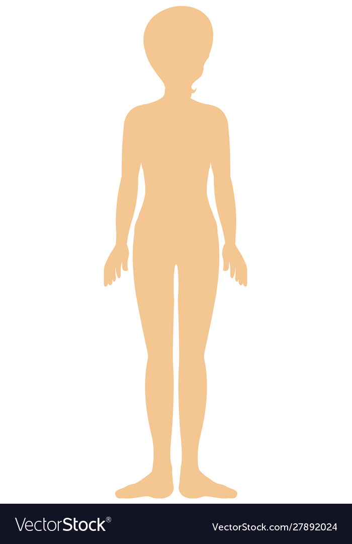 silhouette human body royalty free vector image vectorstock