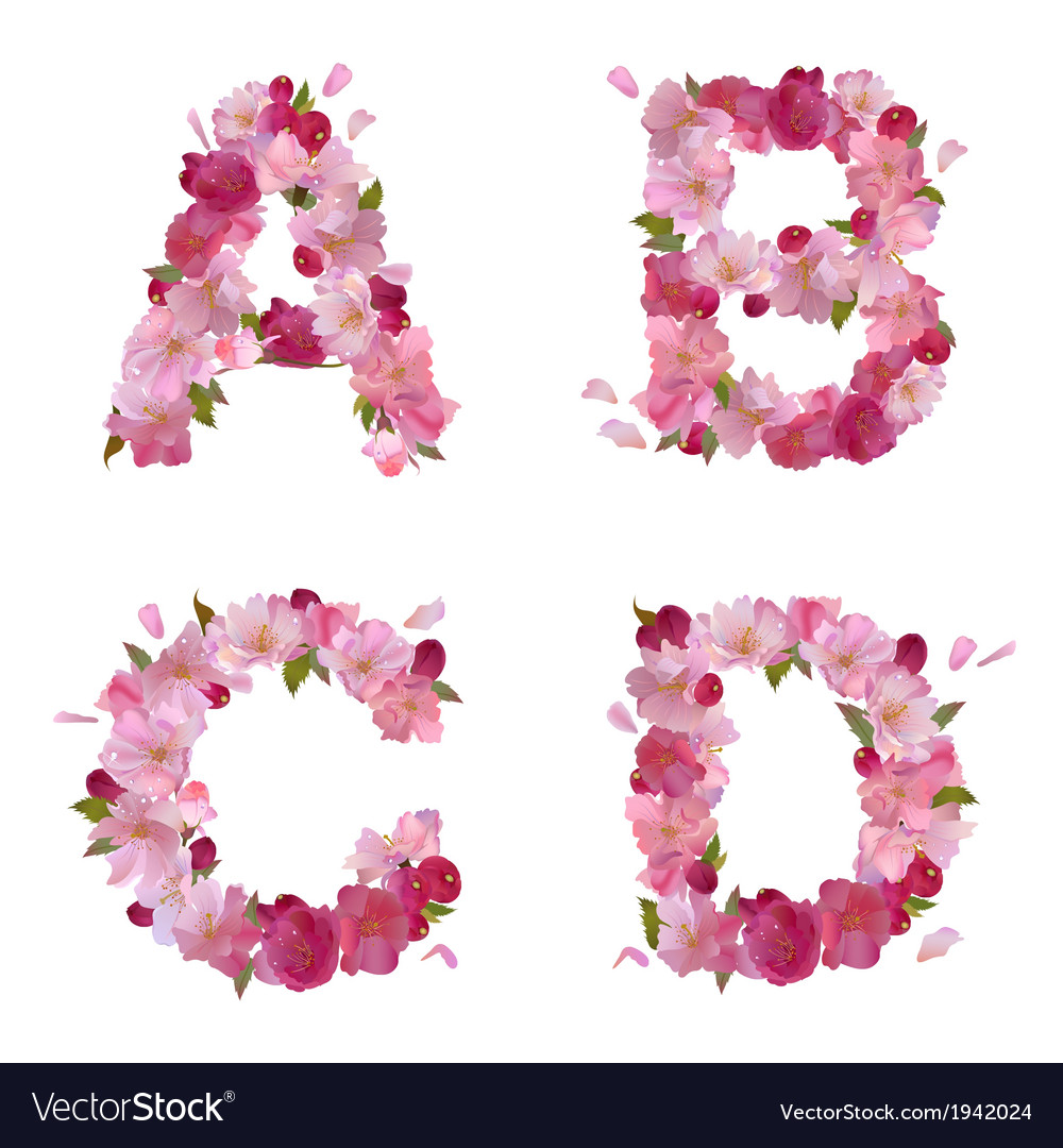 Spring alphabet with cherry flowers ABCD vector image