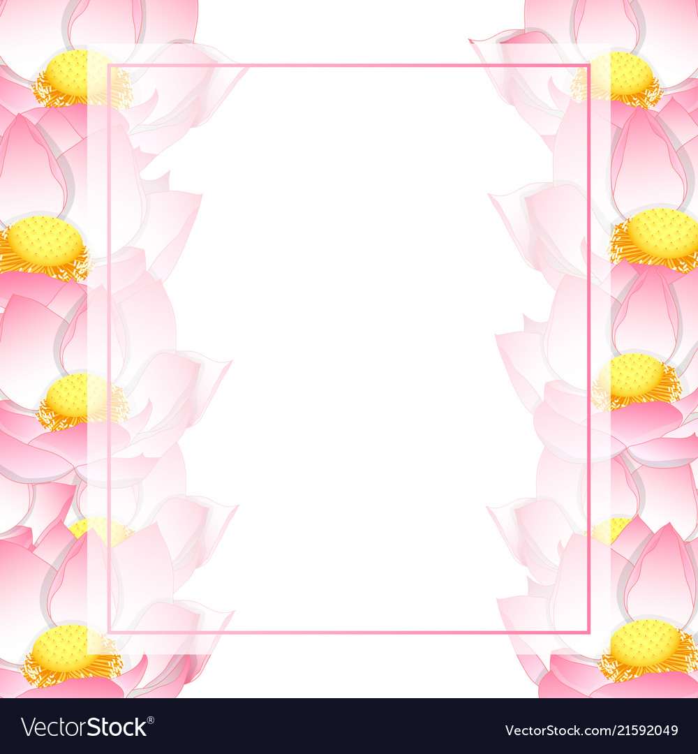 Pink Indian Lotus Banner Card Border Royalty Free Vector
