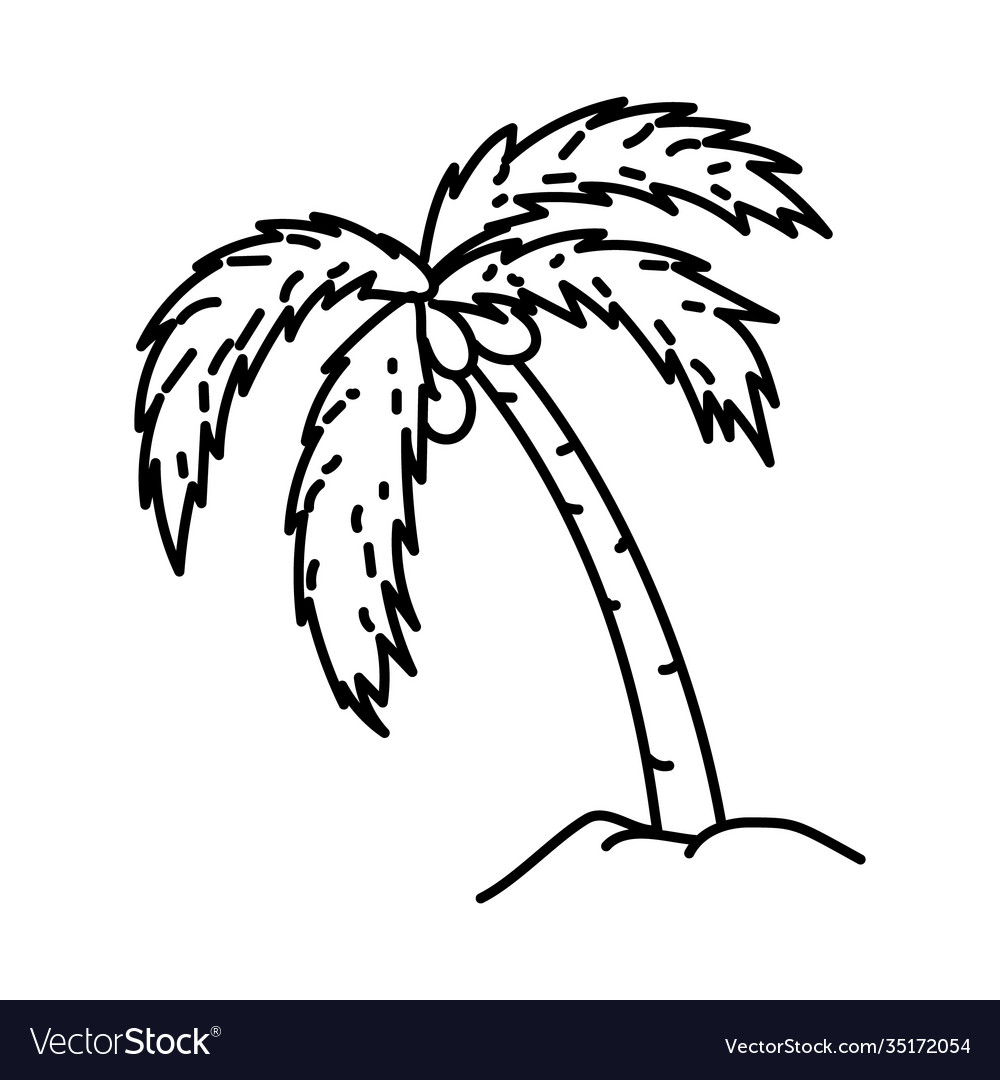 Coconut tree icon doodle hand drawn or outline
