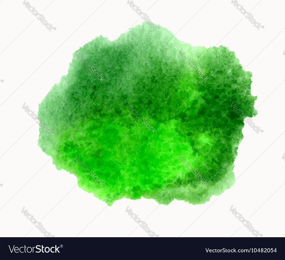 Green watercolor hand drawn stain isolated