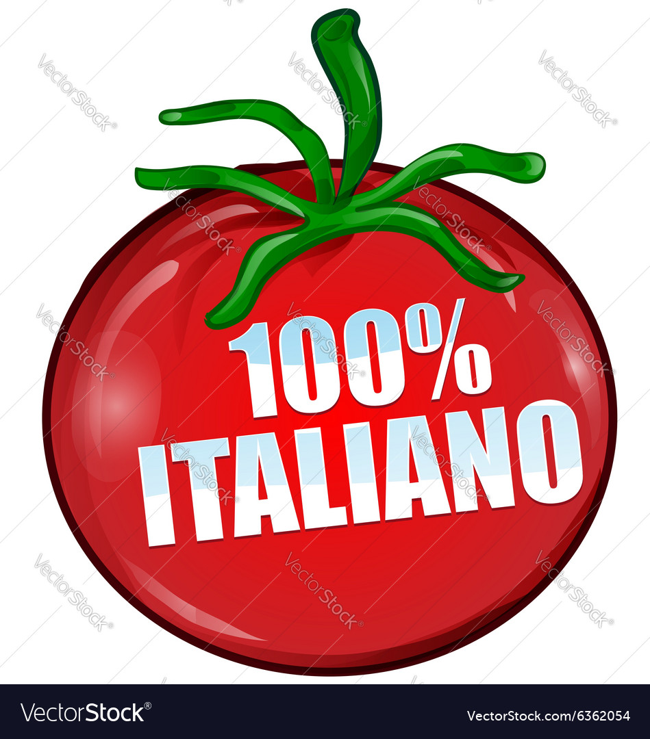 Italian tomato vector image