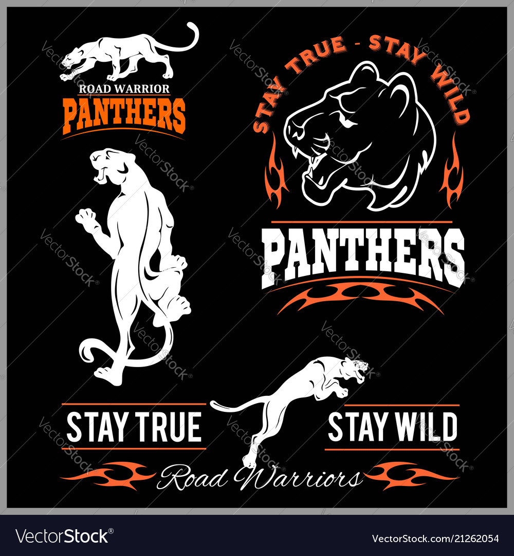 5fe1ea41b0 Panther sport t-shirt graphics vintage apparel