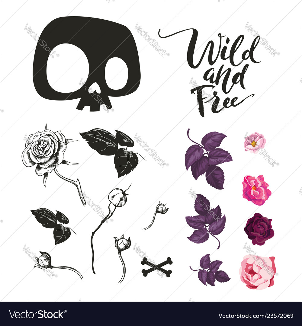 Skull and flowers collection
