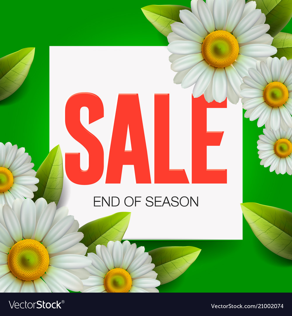 Summer sale lettering and bouquet realistic daisy