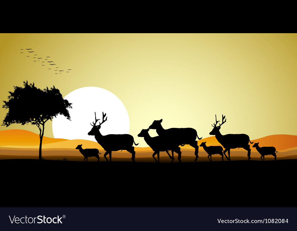 Deer Family Silhouette Royalty Free Vector Image