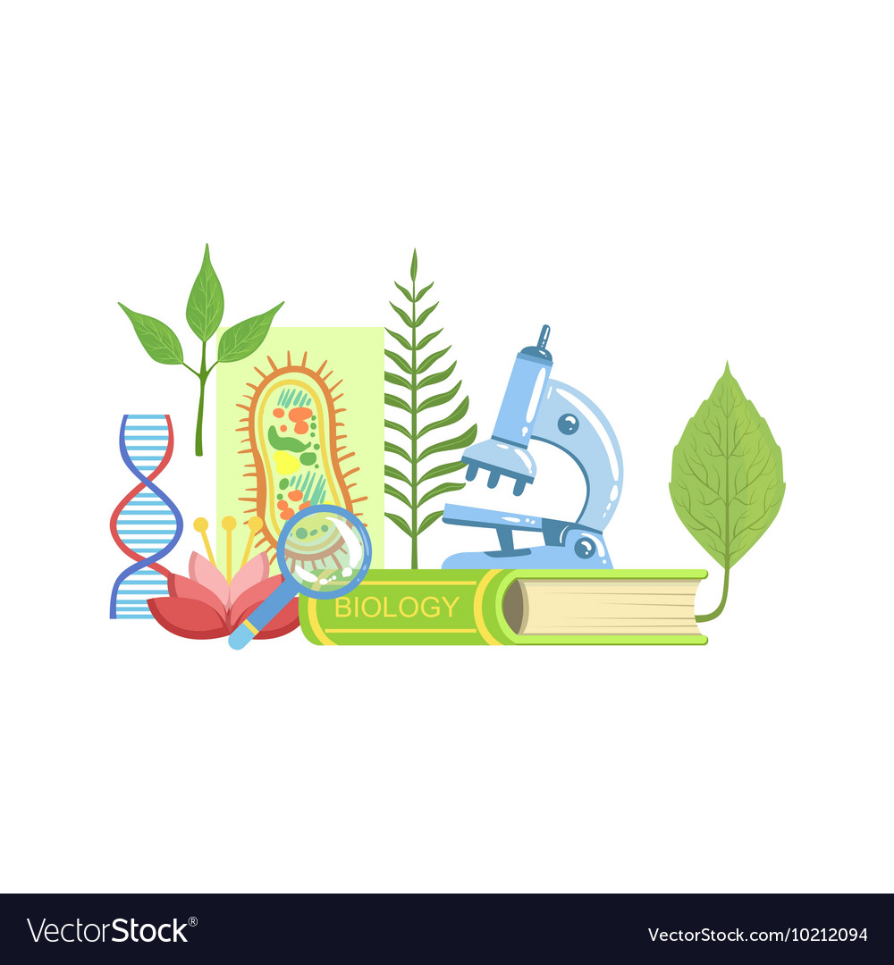 Biology Class Set Of Objects Royalty Free Vector Image