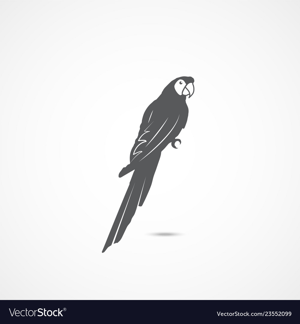 Parrot flat icon