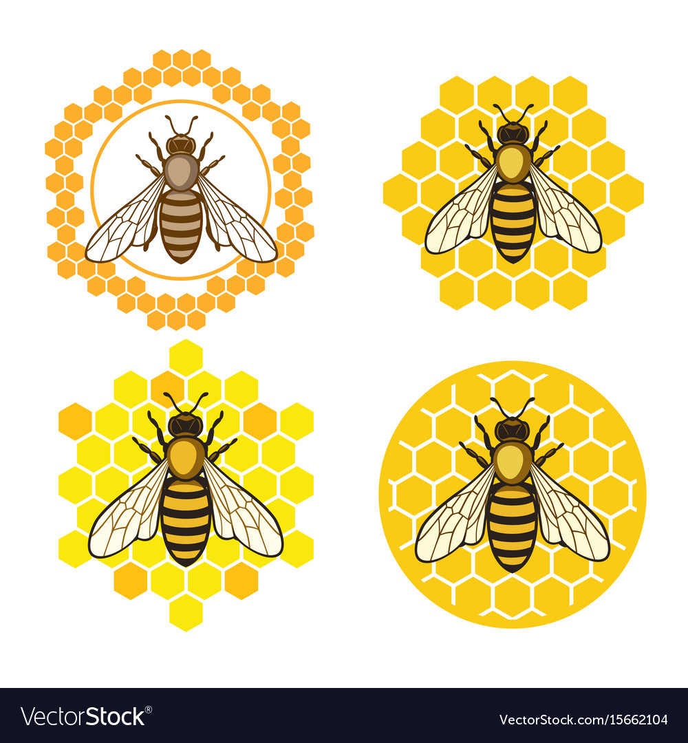 Honey bee set