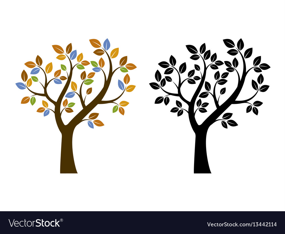 Color and black tree