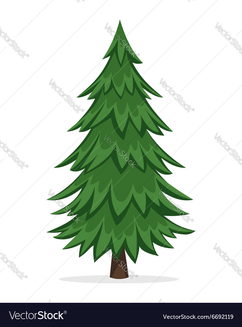 Cartoon Pine Tree Vector Image