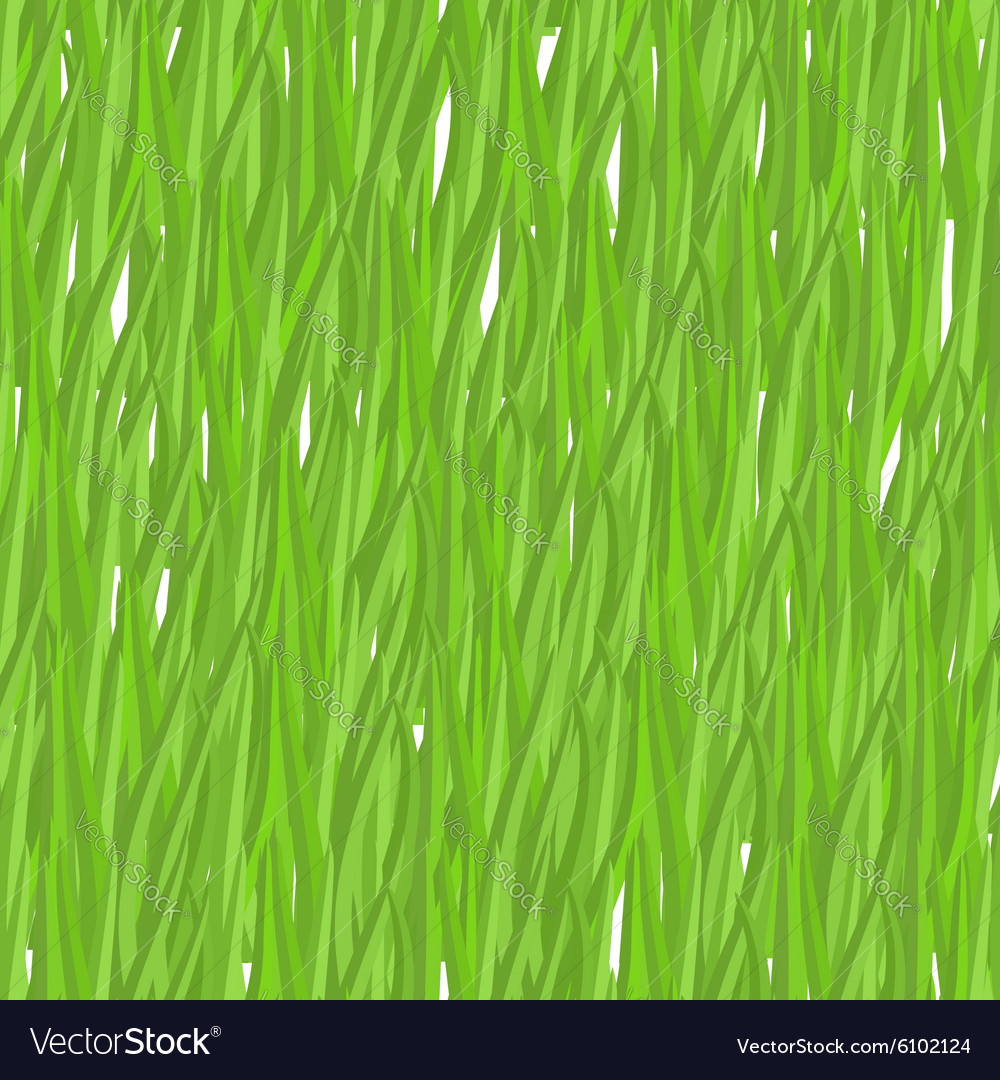 Green grass seamless pattern background natural vector image
