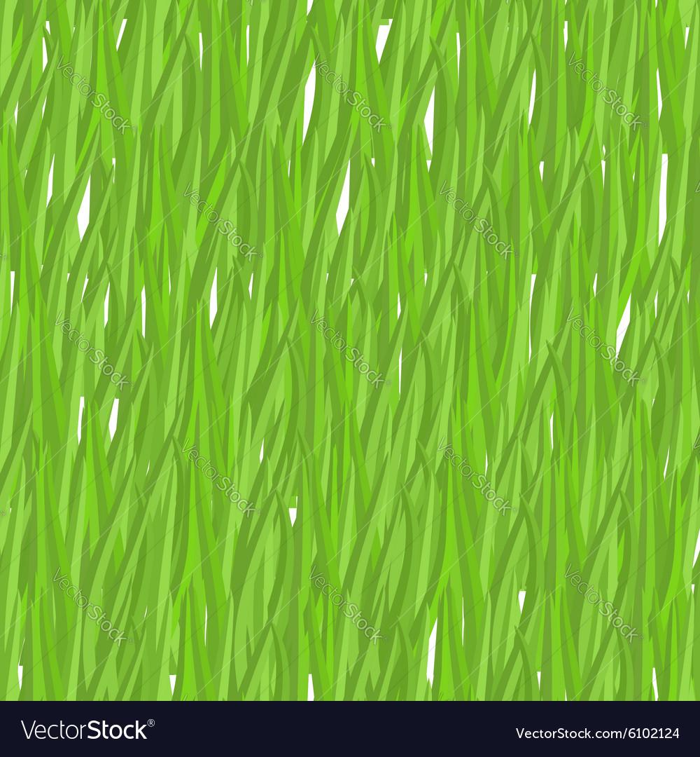 Green grass seamless pattern background natural