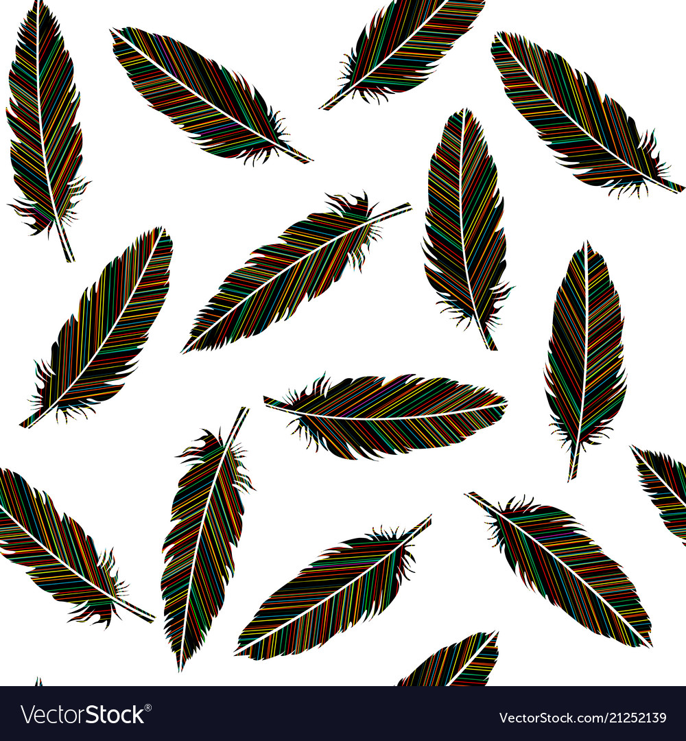 Birds feathers seamless feathers with colored