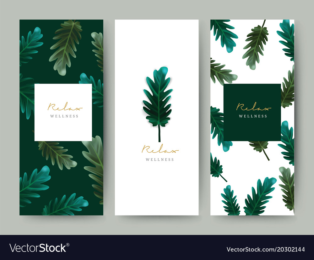 Branding packageing leaf nature background logo vector image