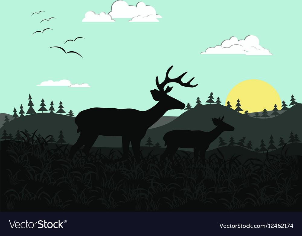 Wild nature on sunrise