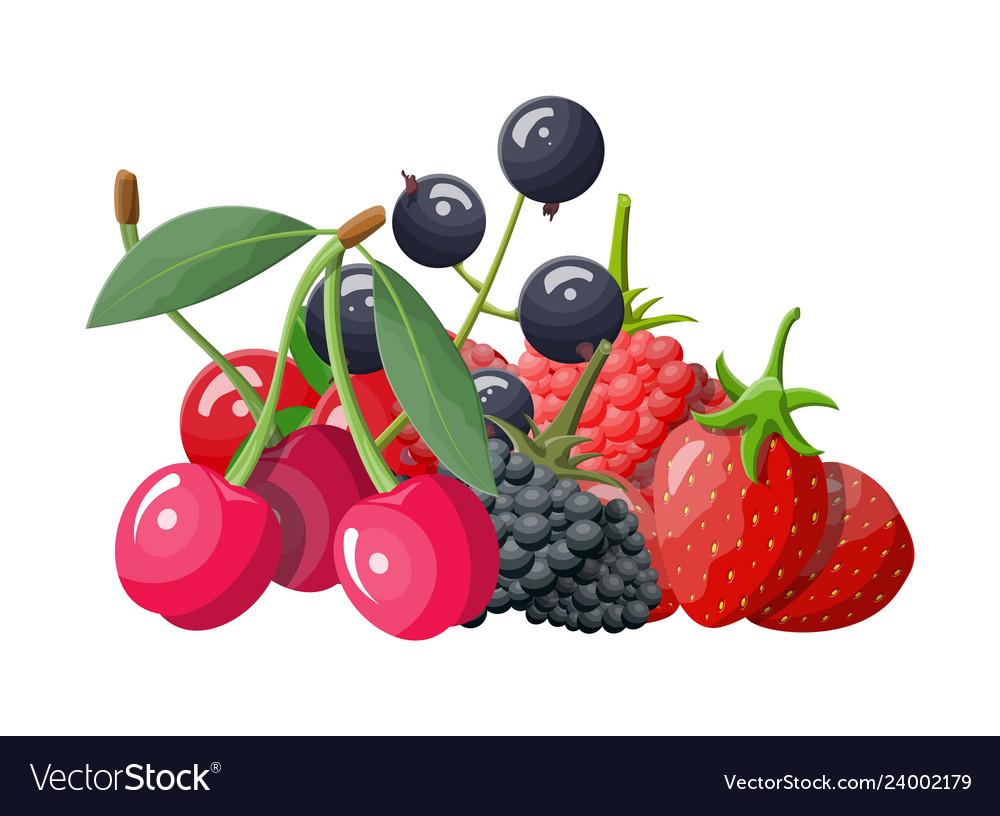 Berry icon set