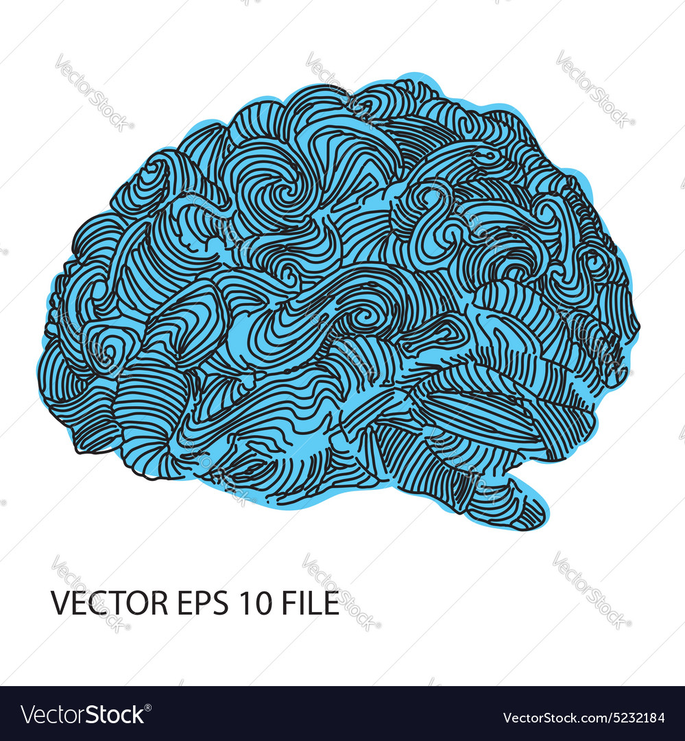 Bright sketchy doodles about brain vector image