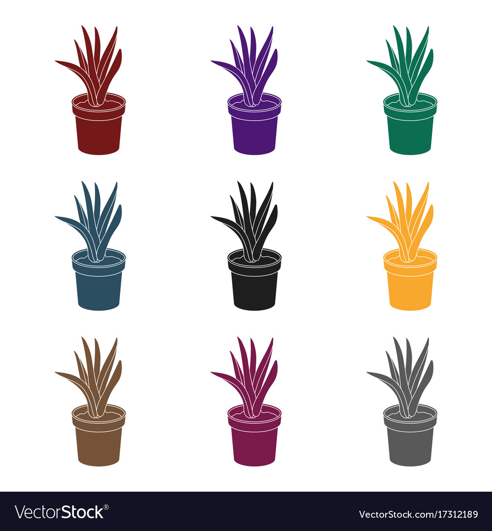 Office plant in th flowerpot icon in black style
