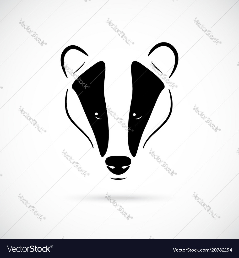 Badger head in black vector image