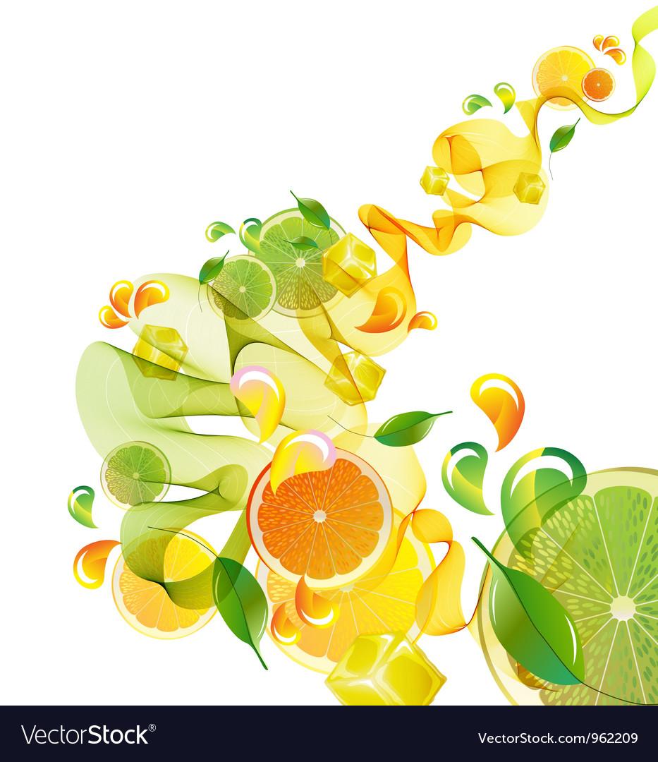 Citrus abstract splash vector image