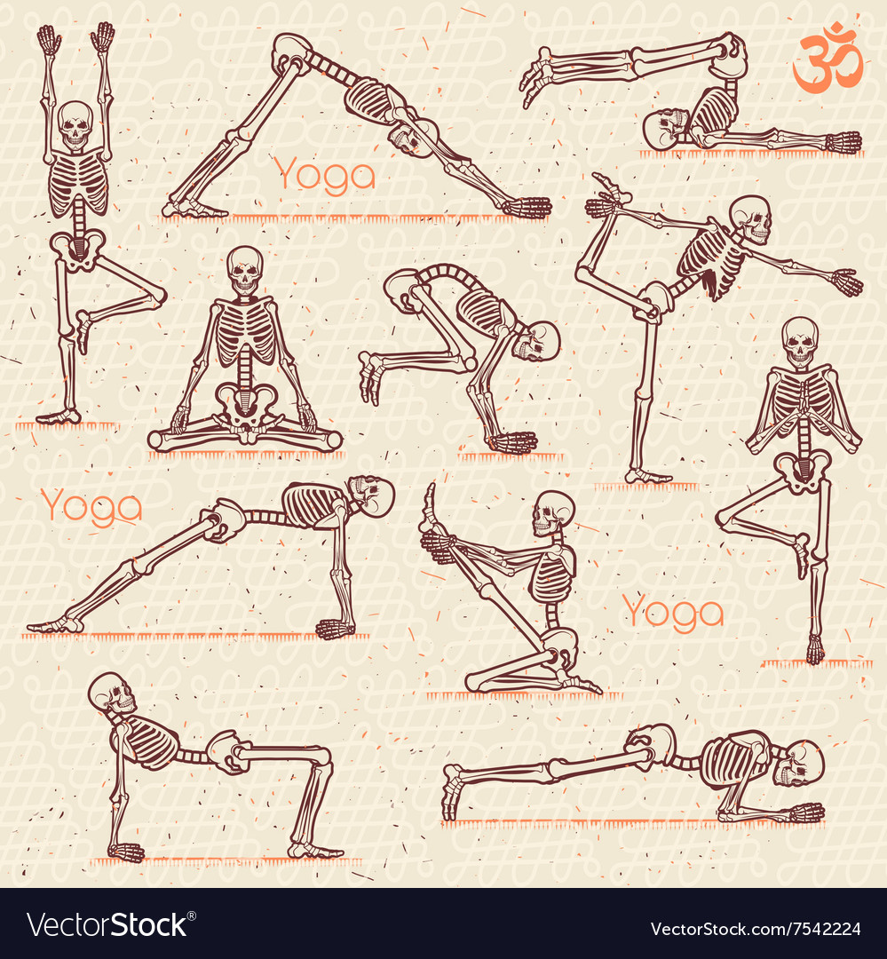 Skeleton practicing yoga