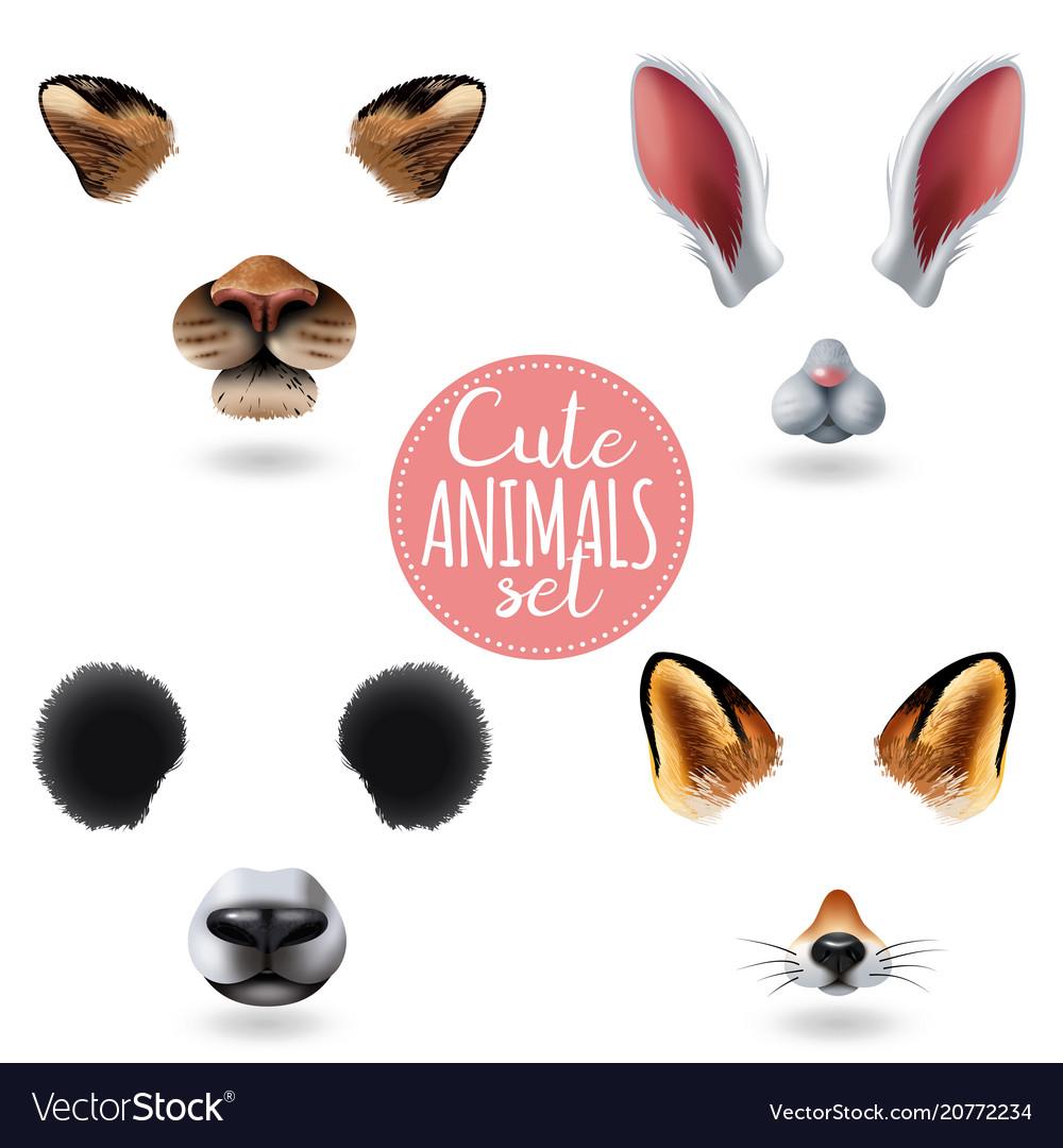 Cute animal faces icon set