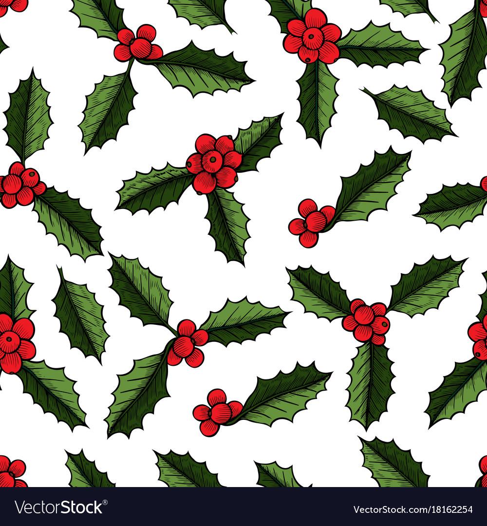Christmas Mistletoe Plant Royalty Free Vector Image