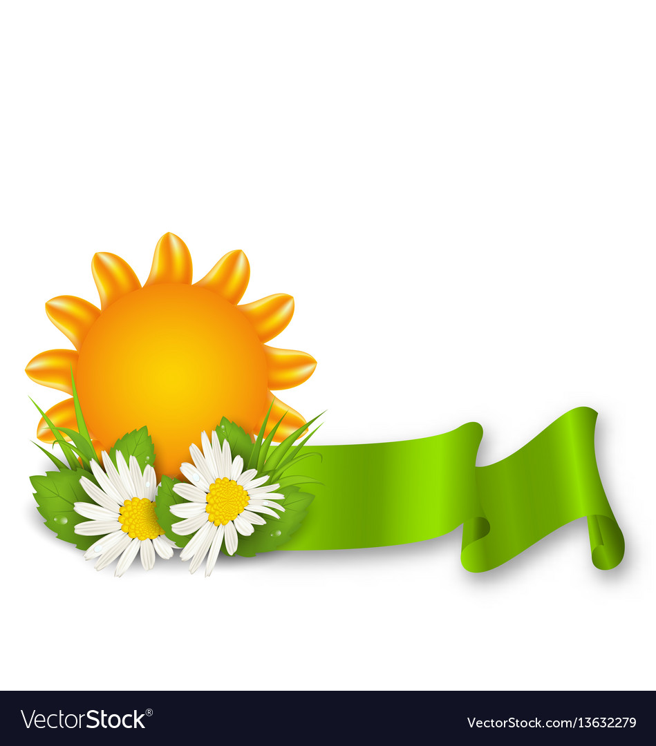 Happy summer background with chamomiles flowers