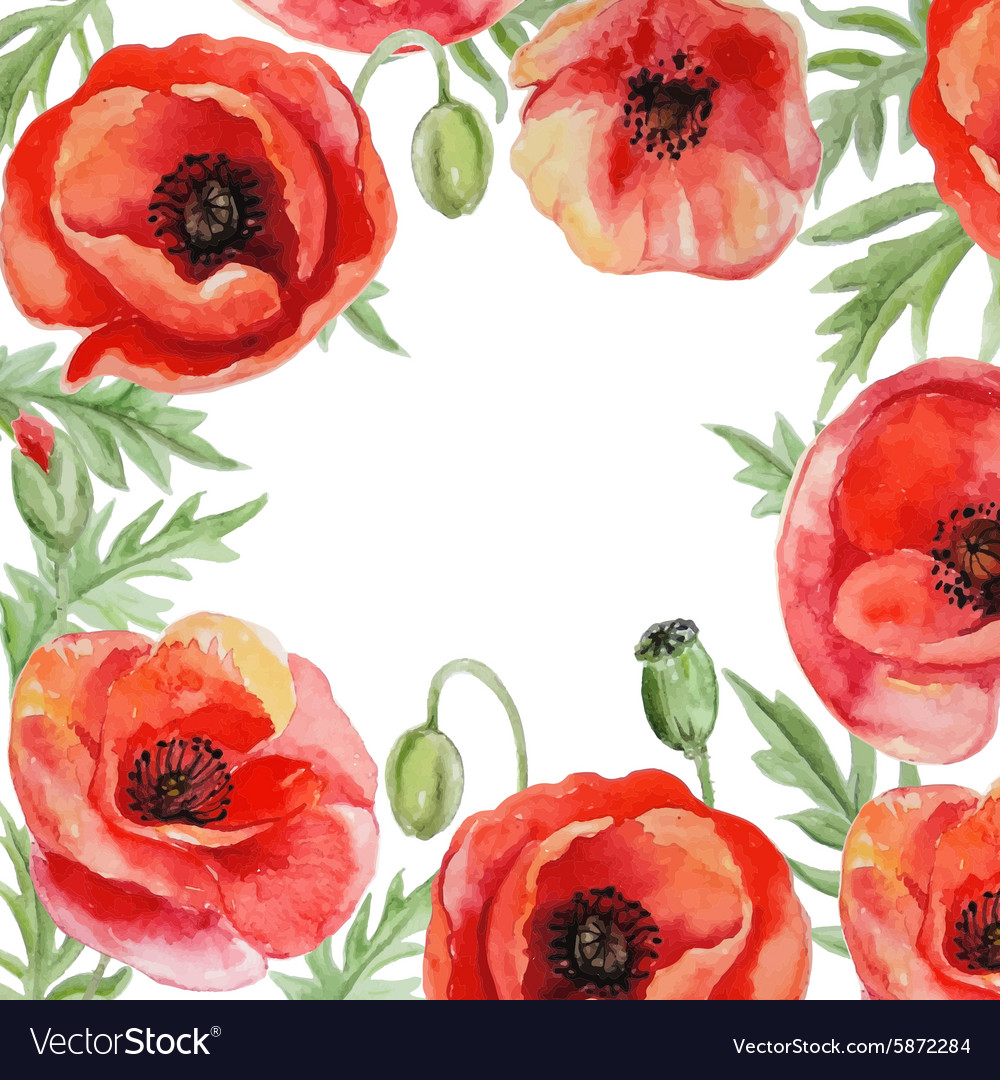 Frame with red watercolor poppy flowers royalty free vector frame with red watercolor poppy flowers vector image mightylinksfo