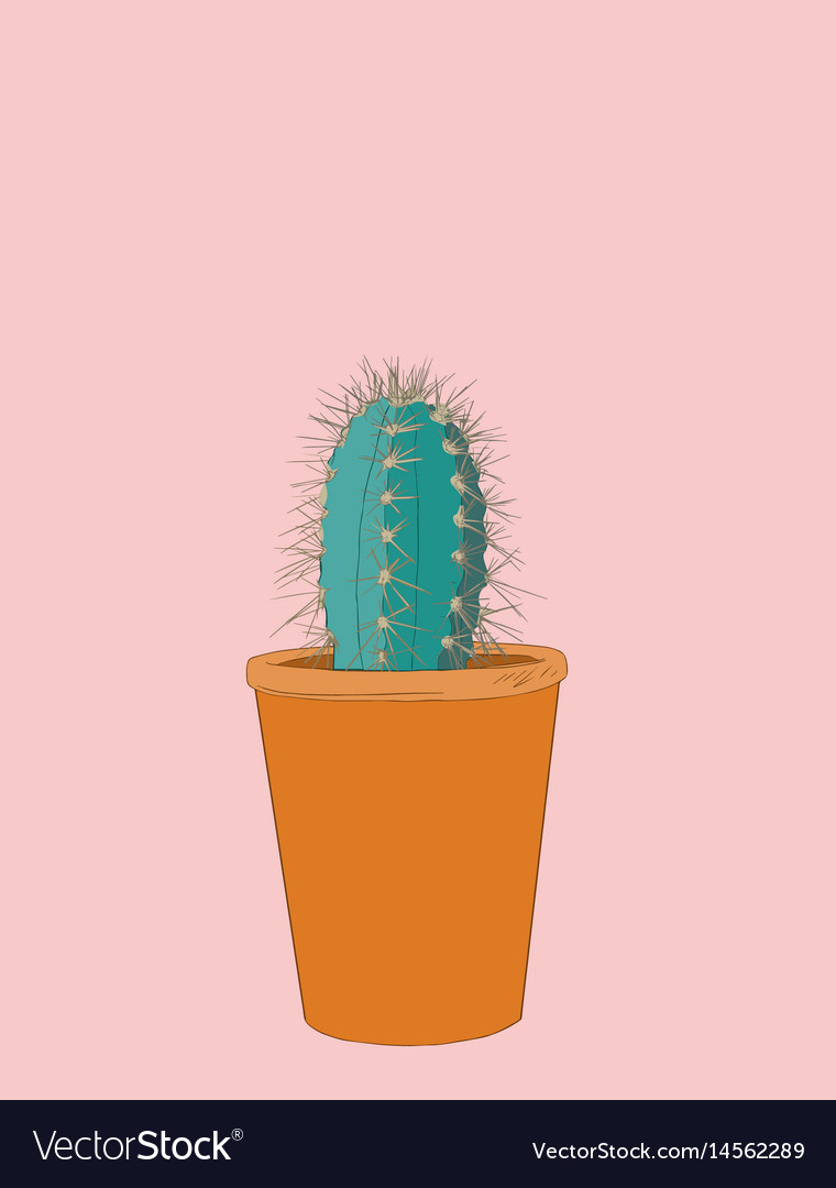 Cactus collection sketchy style succulent set vector image