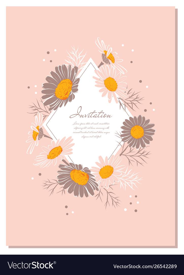 Chamomile background daisy wreath flowers wedding
