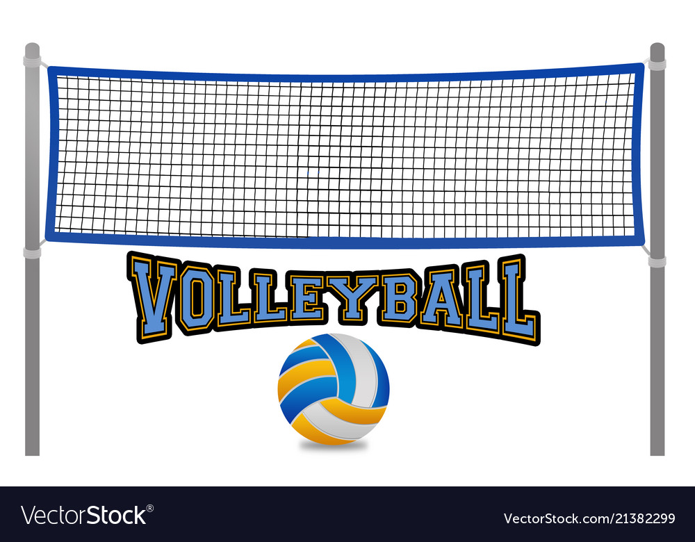 Beach volleyball net and ball