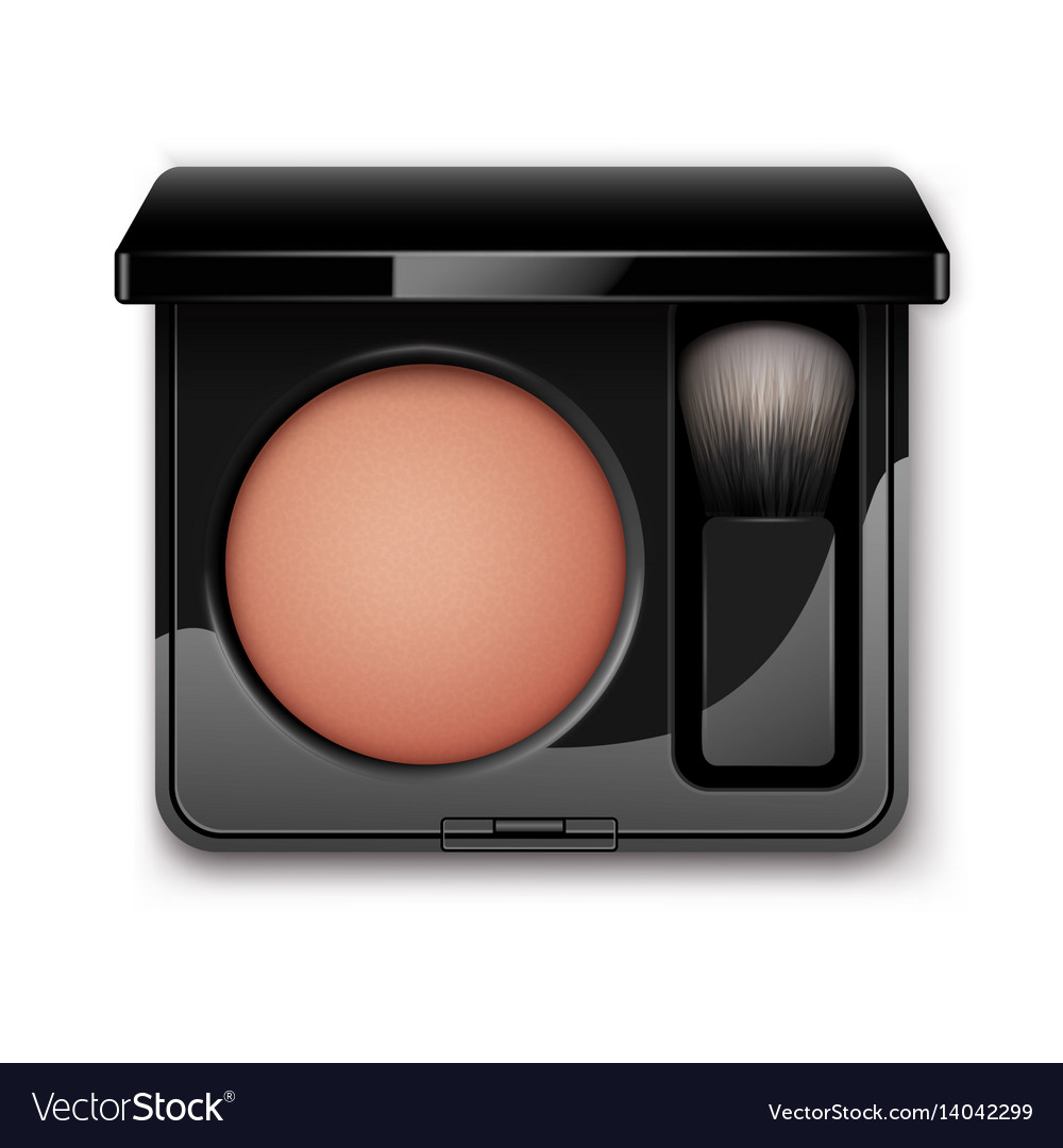 Blusher in black plastic case with makeup brush vector image