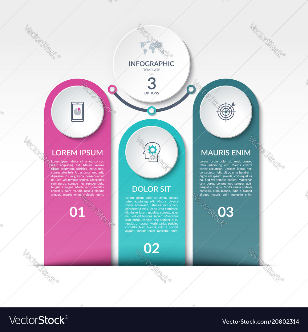 Infographic template with 3 options steps parts vector image