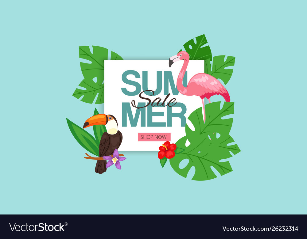 Summer sale banner pink